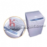 Washing machine mould 002